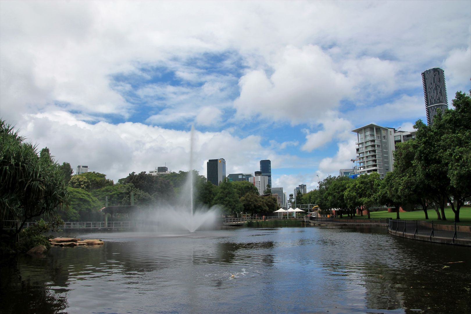 Brisbane-Botanical-Gardens-3