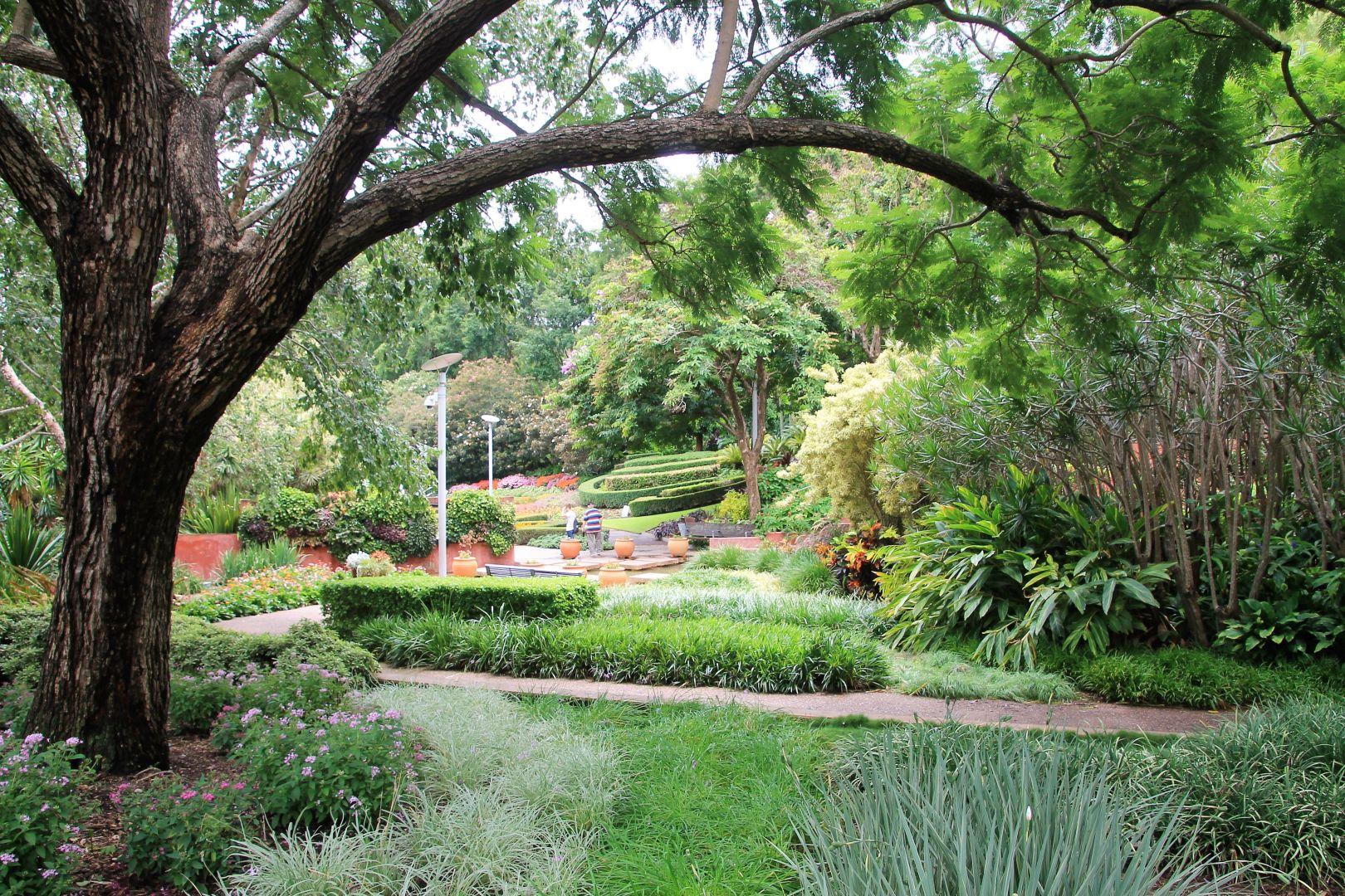 Brisbane-Botanical-Gardens-6