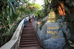 Golden-Mount-Bangkok: stairs to the top