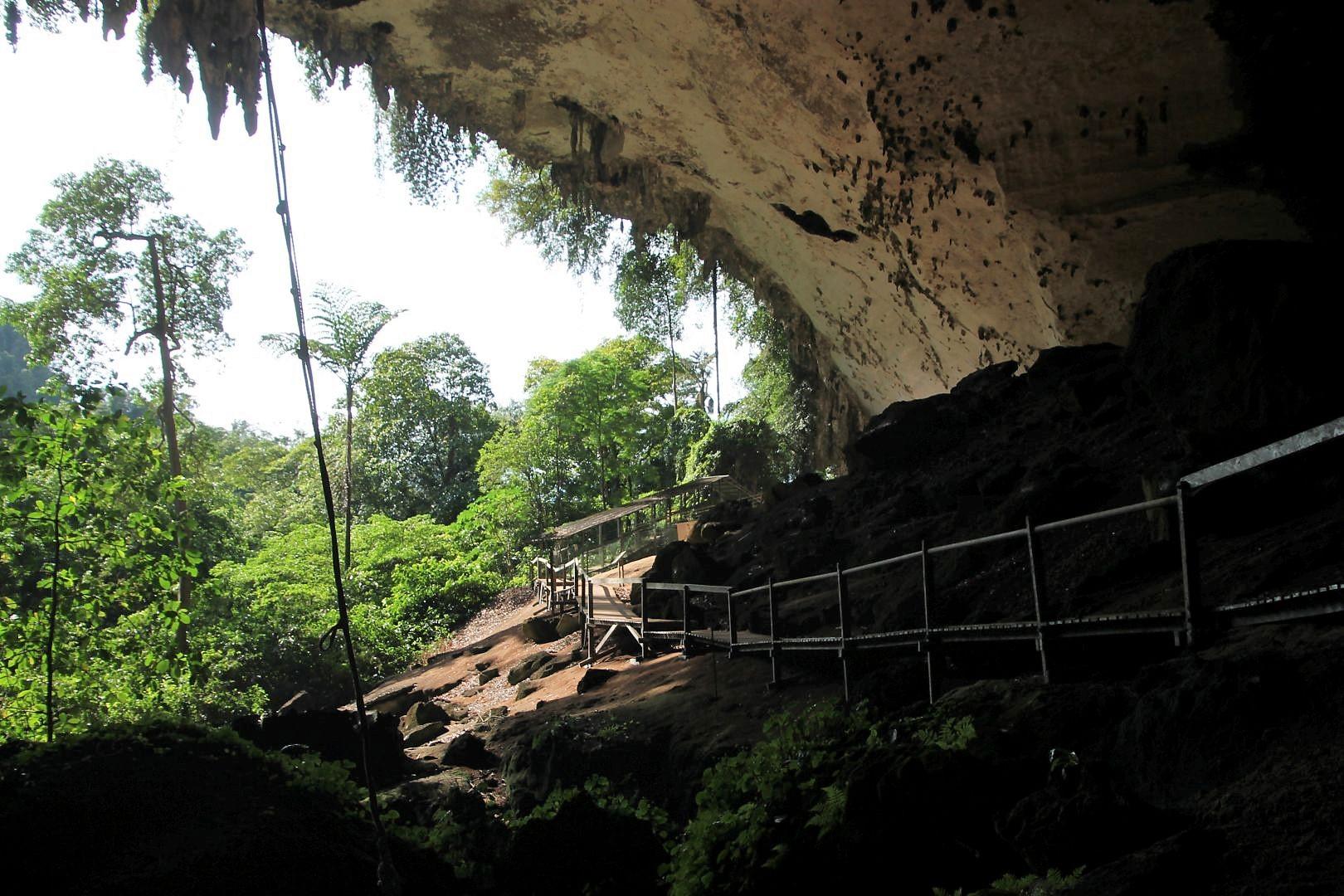 Niah-Caves-2