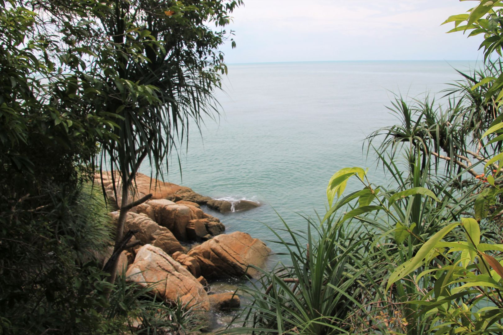 Penang-National-Park-16