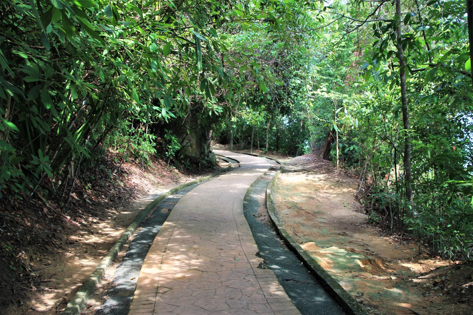Penang-National-Park-3
