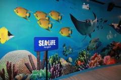 SeaLife-Bangkok