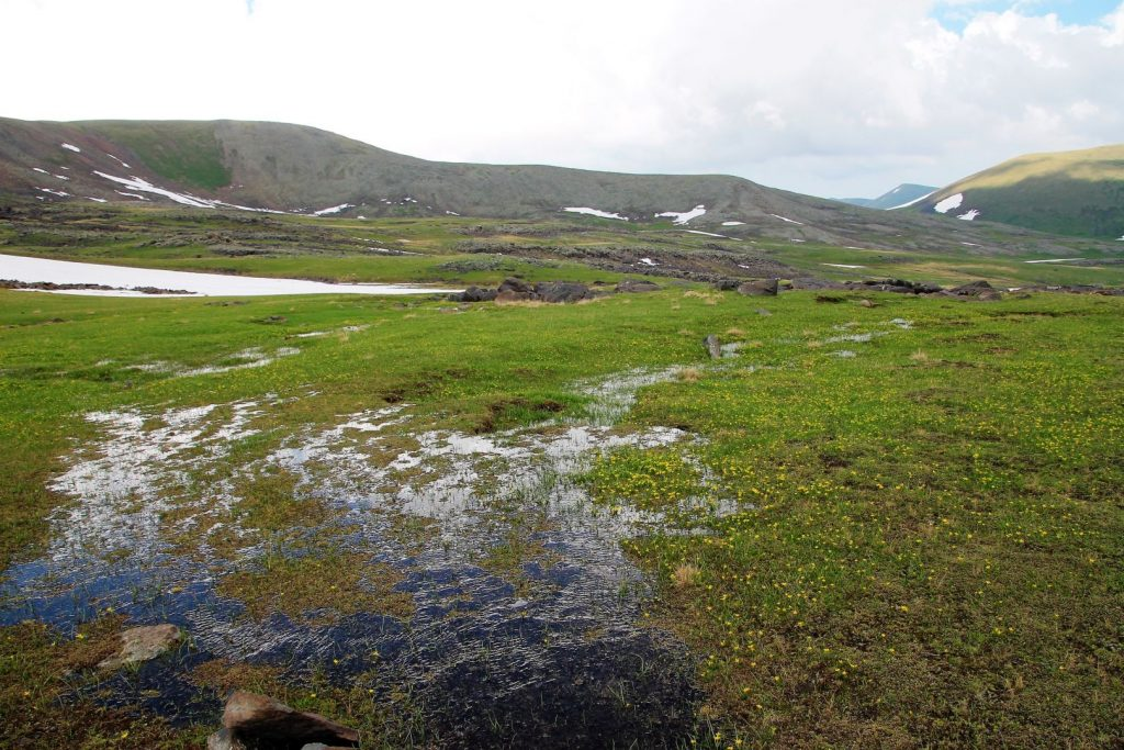 Snowmelt creating thousands of little streams rushing down the Geghama mountains