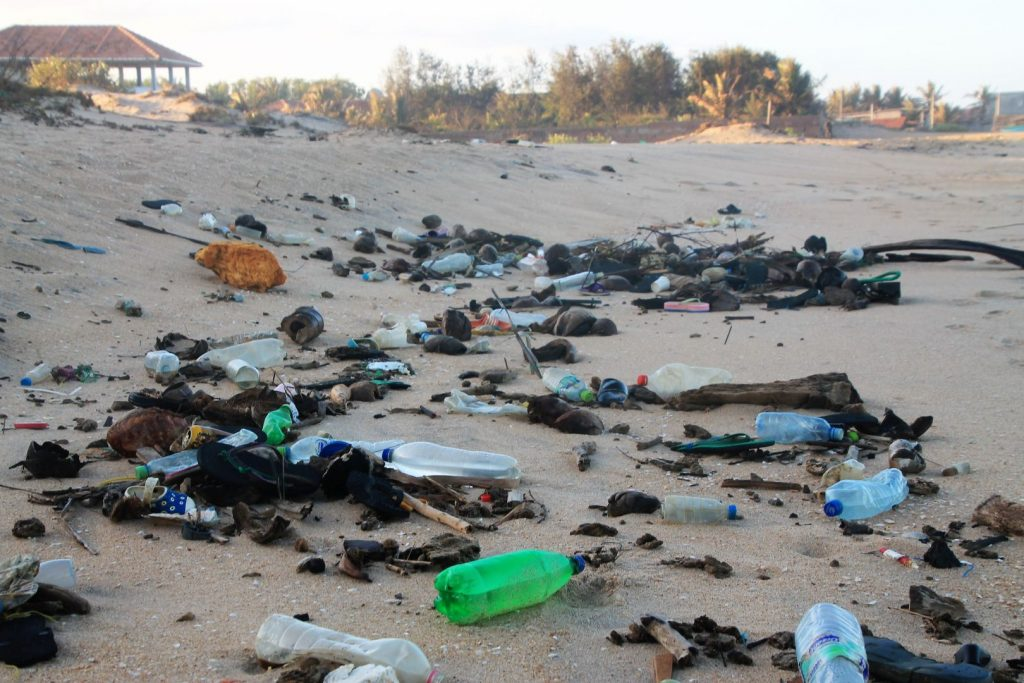 Waste Less in Arugam Bay