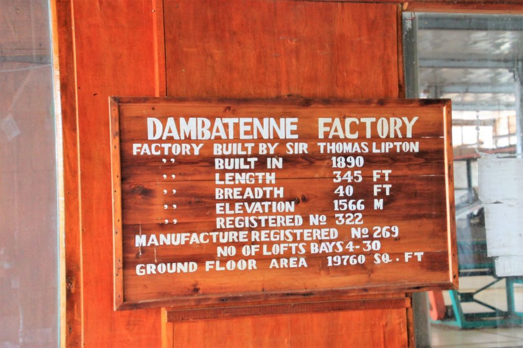Dambatenne Tea Factory